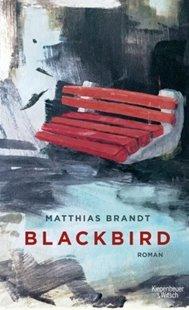 Bild von Blackbird
