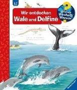 Bild von Rübel, Doris : Wir entdecken Wale und Delfine