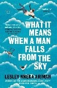 Bild von What It Means When A Man Falls From The Sky