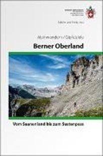 Bild von Berner Oberland Alpinwandern/Gipfelziele
