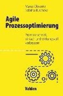 Bild von Olavarria, Marco : Agile Prozessoptimierung