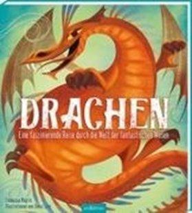 Bild von Drachen