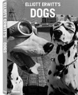 Bild von Erwitt, Elliott: Elliott Erwitt's Dogs