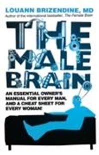 Bild von eBook The Male Brain