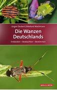 Bild von Deckert, Jürgen : Die Wanzen Deutschlands